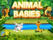 Play Animal Babies