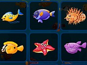 Play Fish Cards Match