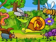 Play Insects Photo Differences