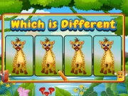 Play Which Is Different Animal